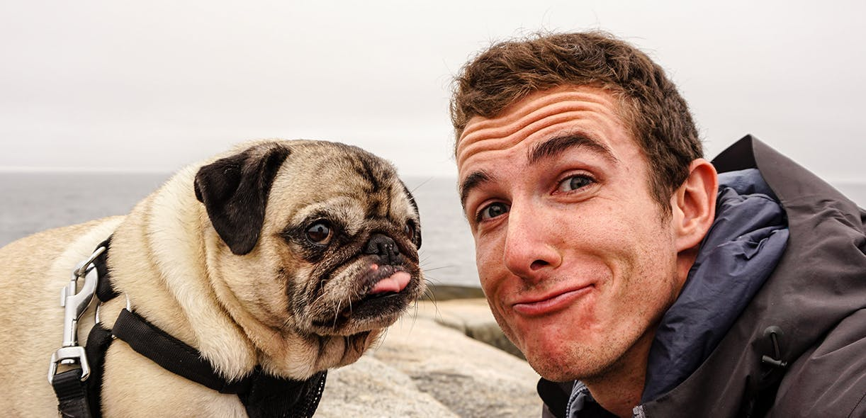 You and your dog look more alike than you think