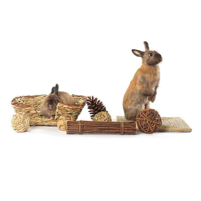 The100% natural play kit for your rabbit