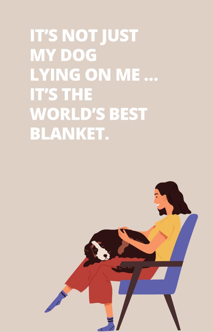 The world's best blanket