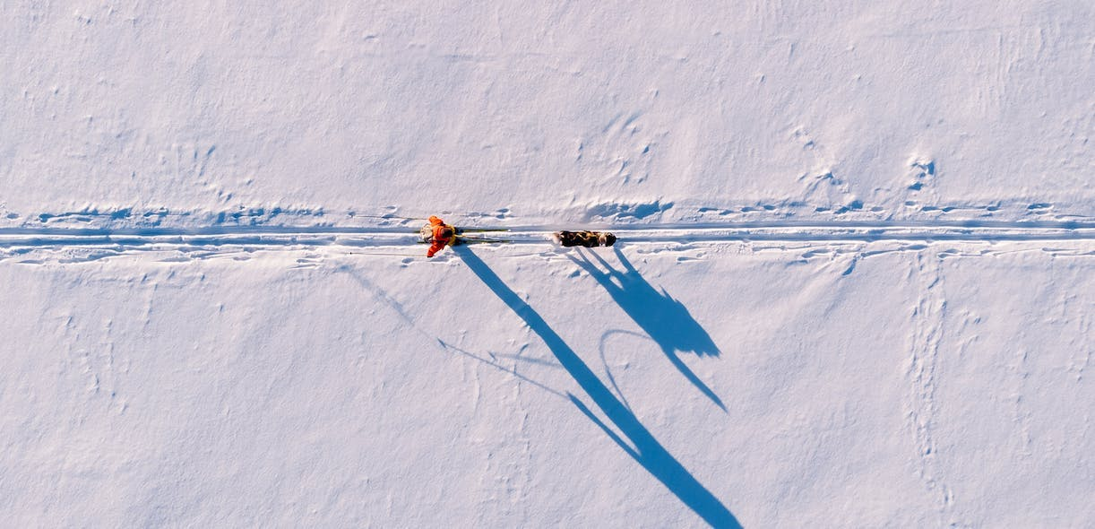 Dog skijoring: You, your dog, skis … and a ton of fun