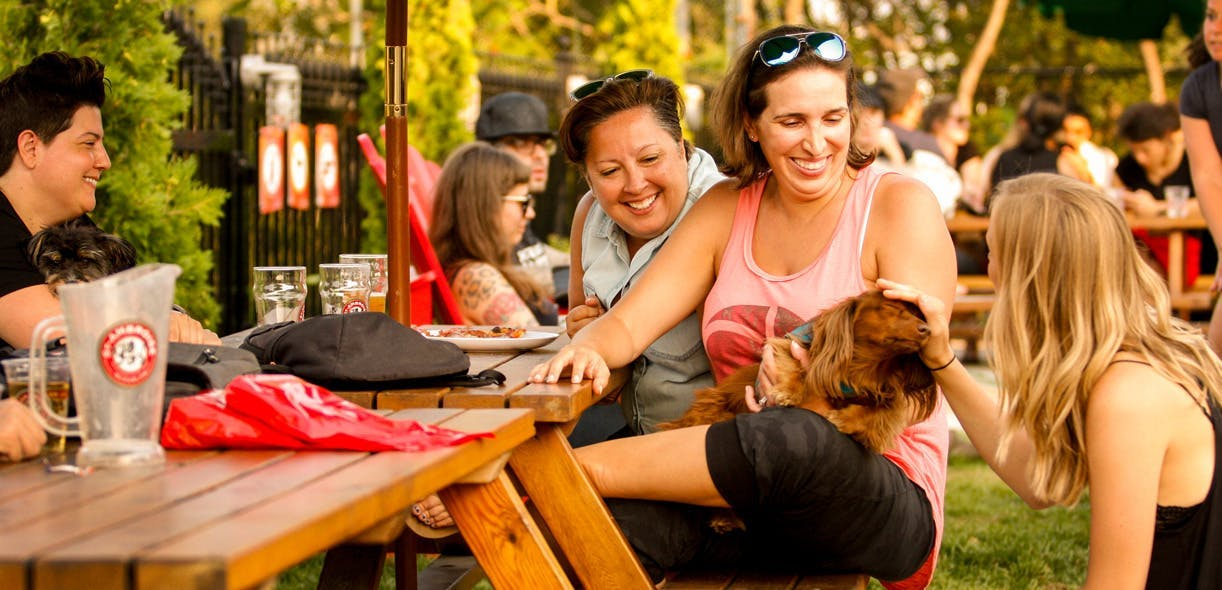 Drinks, friends, dogs and good times at Montreal's St-Ambroise Terrasse