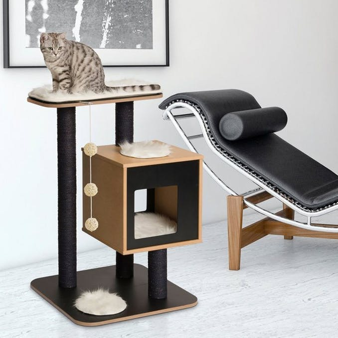 The cat tree with a sense of design
