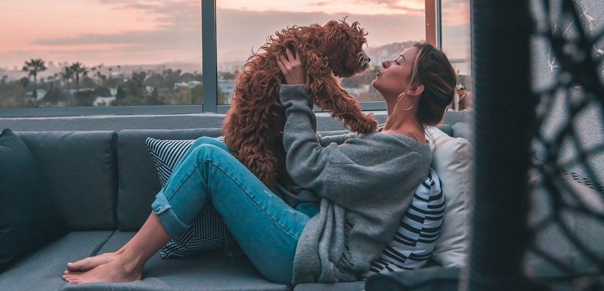 Online study targeting dog parents