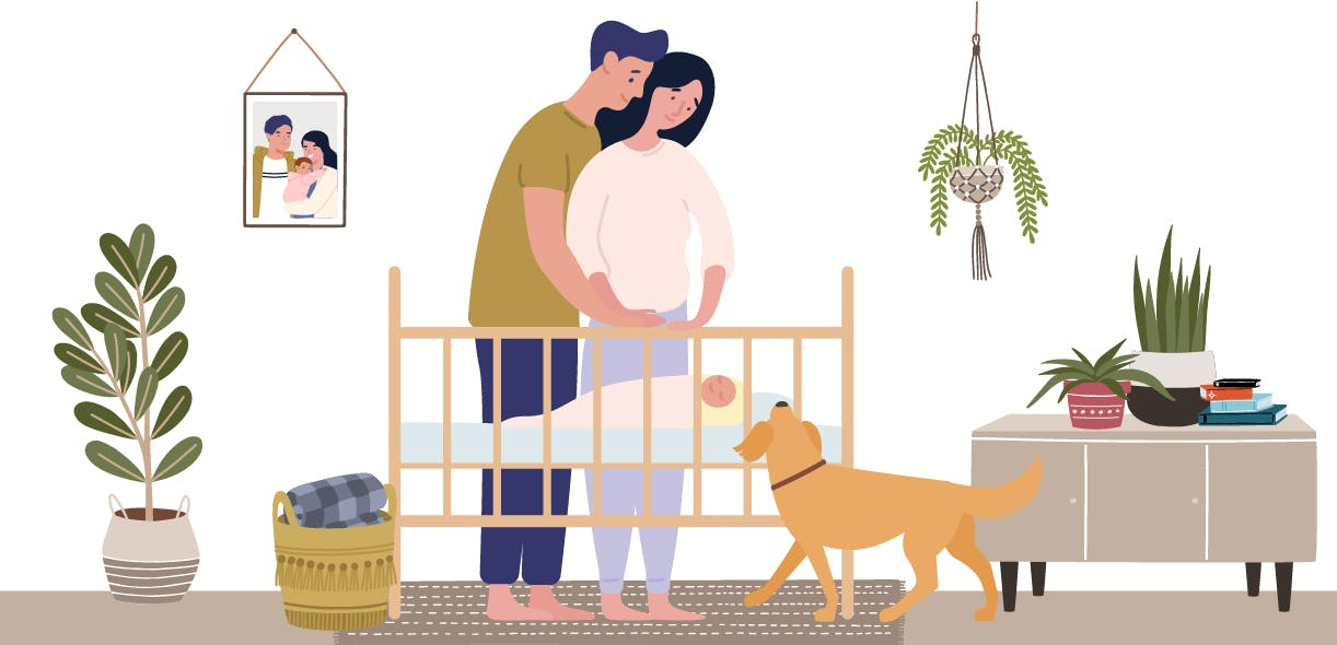 Ensuring a happy relationship between your dog and your newborn baby