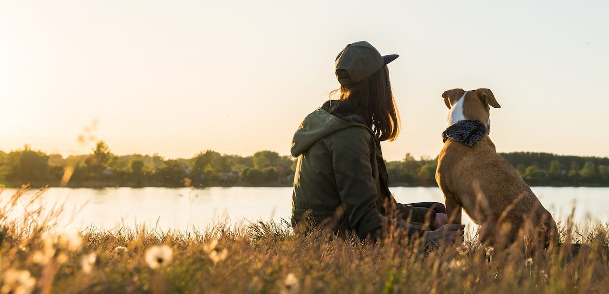 Lyme disease: Misconceptions about ticks