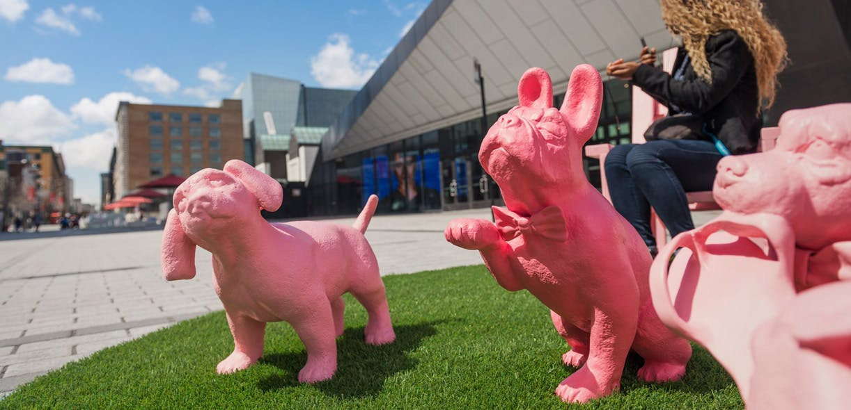 Quirky, dog-centric public art in downtown Montreal
