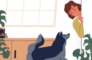 Bad weather? Here are some indoor activities with your dog