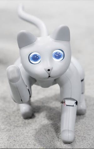 MarsCat: The futuristic feline robot