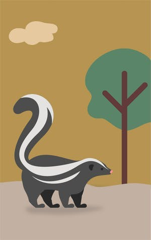 Yuck! Your dog reeks of skunk, what to do?