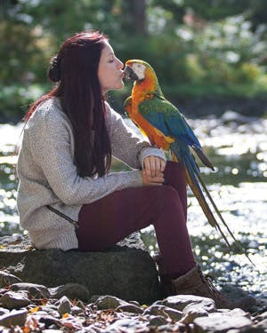 Is an exotic bird the right companion for me?