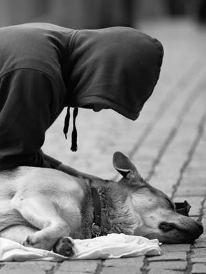 The beneficial bond between homeless people and their dogs