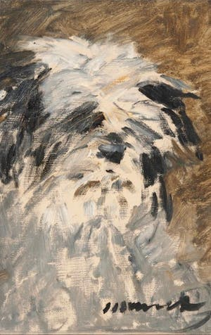 Pooch portrait by Manet exhibited for the first time