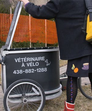 The bicycle-based veterinarian