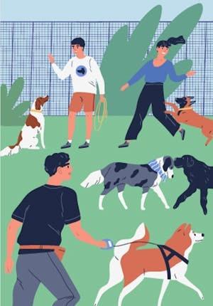 The short guide of dog park etiquette