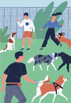 The short guide of dog park etiquette