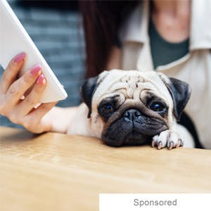 The PetDiabetes Tracker app
