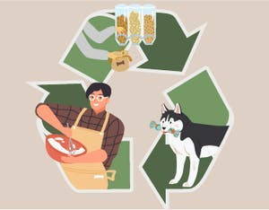 How to shrink your animal's environmental footprint