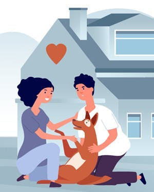 How your home insurance can protect your animals